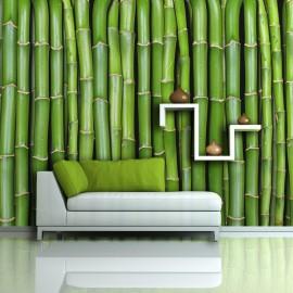 Fotomural - Bamboo parede