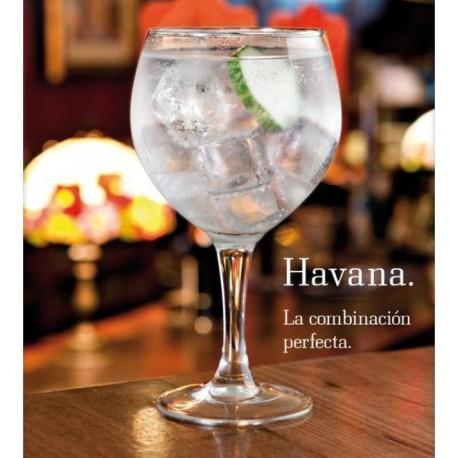 Copas cristal Havana