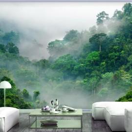 Fotomural - Morning Fog