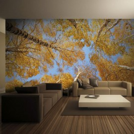 Fotomural - Coronas de árboles otoñales