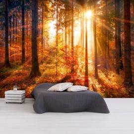 Papel de parede autocolante - Autumnal Time