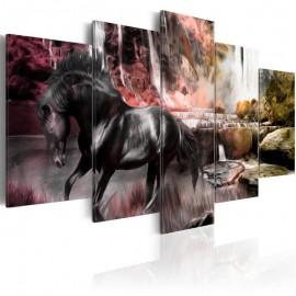 Quadro - Black horse on crimson sky background
