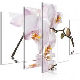 Quadro - Delightful Orchid (5 Parts) Wide