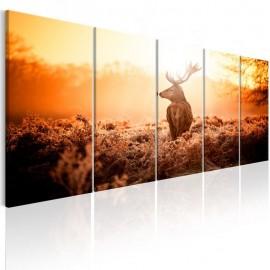 Quadro - Deer at Sunset