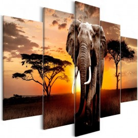 Cuadro - Wandering Elephant (5 Parts) Wide