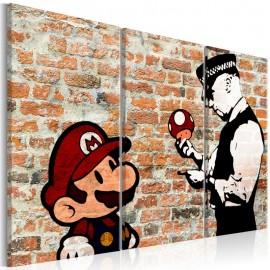 Cuadro - Caught Mario