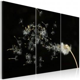 Quadro - Dandelions- the transience