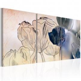 Quadro - Sketch of Tulips