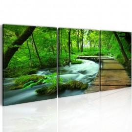Quadro - Forest broadwalk - triptych