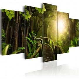 Cuadro - Magical Jungle
