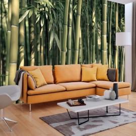 Fotomural - Bamboo Exotic