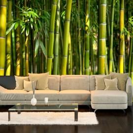 Fotomural - Oriental Garden