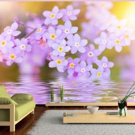 Fotomural - Violet Petals In Bloom