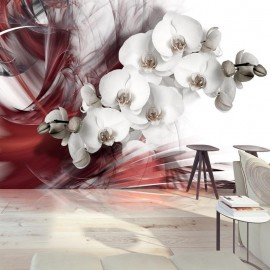 Fotomural - Orchid in red