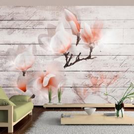 Fotomural - Subtlety of the Magnolia