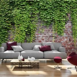 Fotomural - Brick and ivy