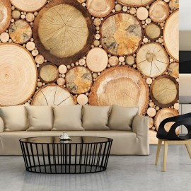 Fotomural - Wood grains