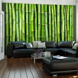 Fotomural - Parede de bambu
