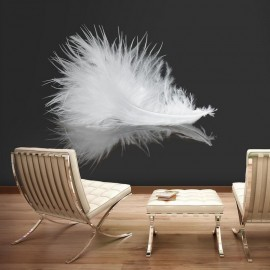 Fotomural - White feather