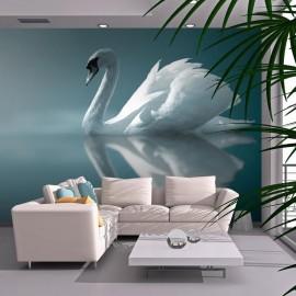 Fotomural - Cisne blanco