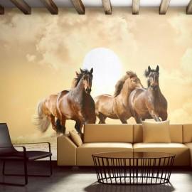Fotomural - Cavalos correndo
