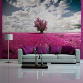 Fotomural - Prado de color magenta