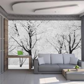 Fotomural - Árvores - Paisagem de Inverno