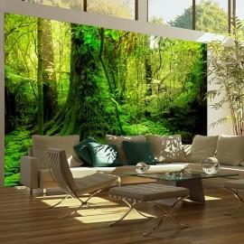Fotomural - Jungle