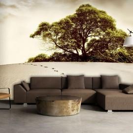 Fotomural - Un árbol en un desierto