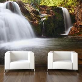 Fotomural - Una pequeña cascada en el río Elba
