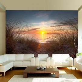 Fotomural - Pôr do sol sobre o Oceano Atlântico