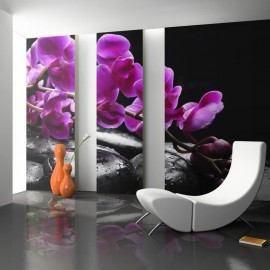 Fotomural - Momentos relajantes: orquídea y piedras zen