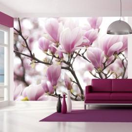 Fotomural - Ramo de magnolia floreciente
