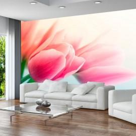 Fotomural - Primavera y tulipanes