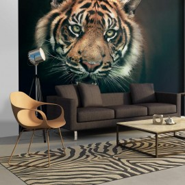 Fotomural - Tigre de Bengala