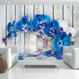 Fotomural - Cobaltic orchid