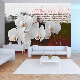 Fotomural - El diario y la orquídea