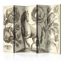 Biombo - Horse II [Room Dividers]