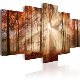 Quadro - Forest Fog