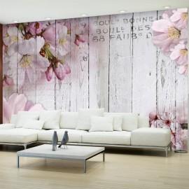 Fotomural - Apple Blossoms