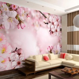 Papel de parede autocolante - Spring Cherry Blossom