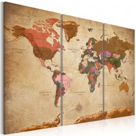 Cuadro - Maps: Brown Elegance