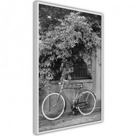 Pôster - Bicycle with White Tires
