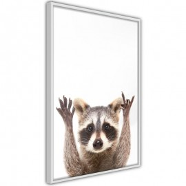 Póster - Funny Racoon