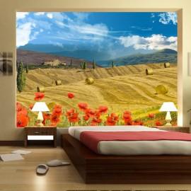 Fotomural - Autumn landscape