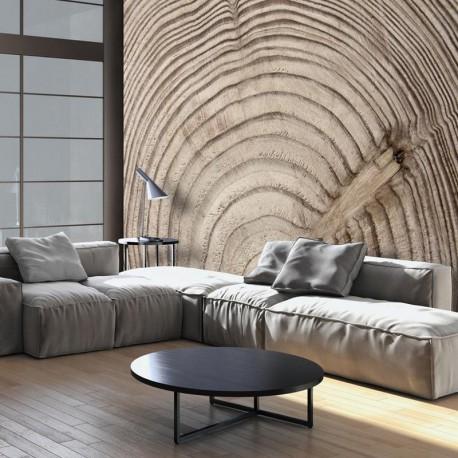 Fotomural - Anillo de madera