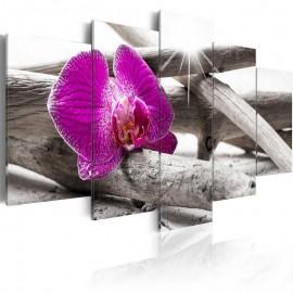 Cuadro - Orchid on beach