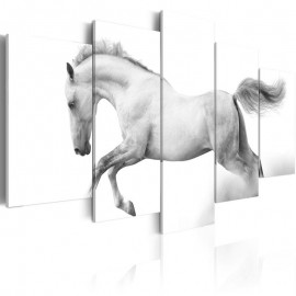 Quadro - Horse- passion and freedom