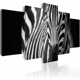 Quadro - Zebra look