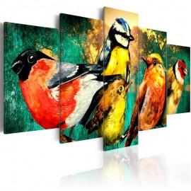 Quadro - Birds Meeting